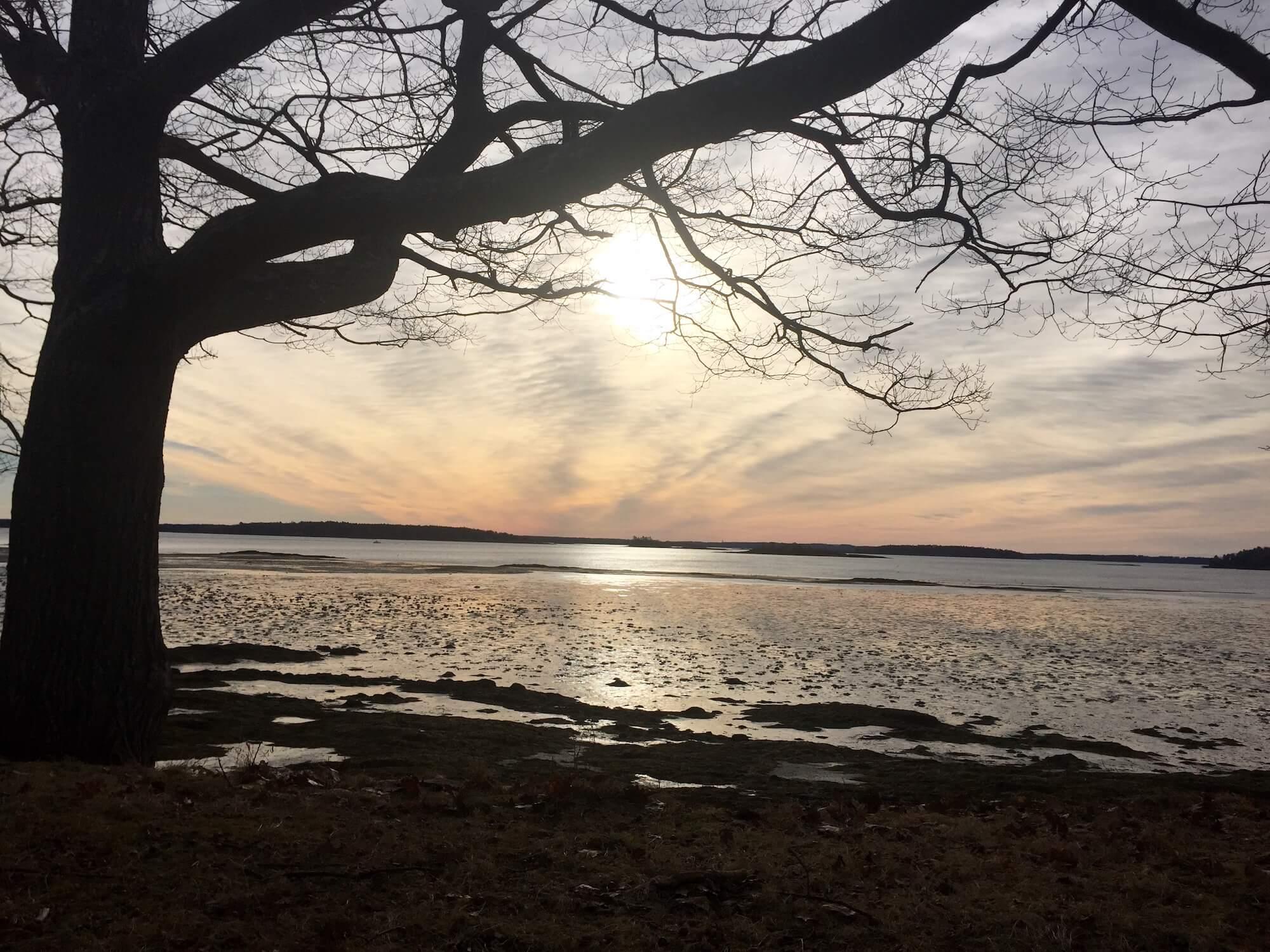 Myofascial release beach photography Renie Allen